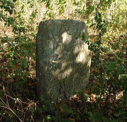 Старая могила
